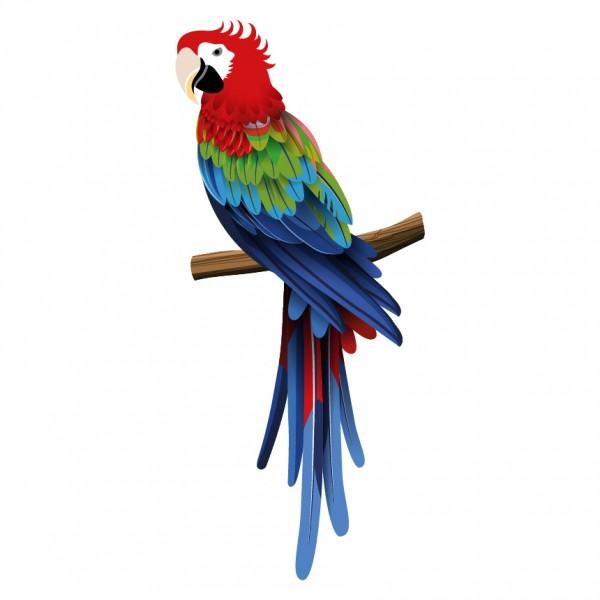 Papoušek ara