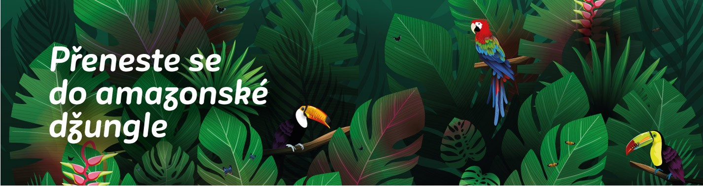 Amazonií skrz na skrz