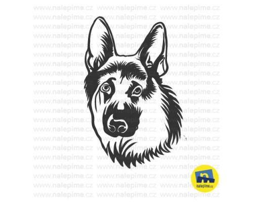 Německý ovčák - hlava