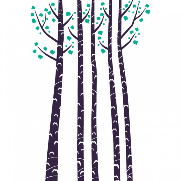 Bříza - strom