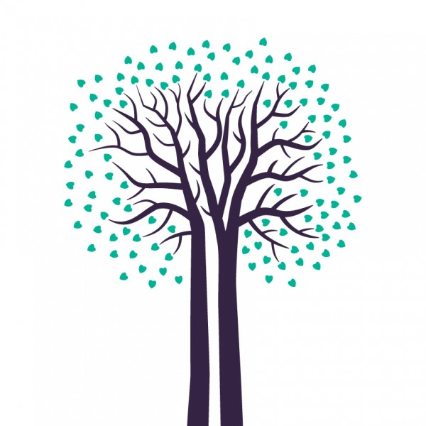 Dub - strom
