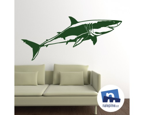 Bílý velký žralok