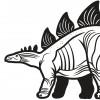 Stegosaurus  - dinosaurus