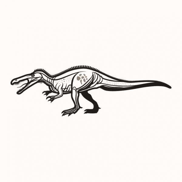 Suchomimus  - dinosaurus